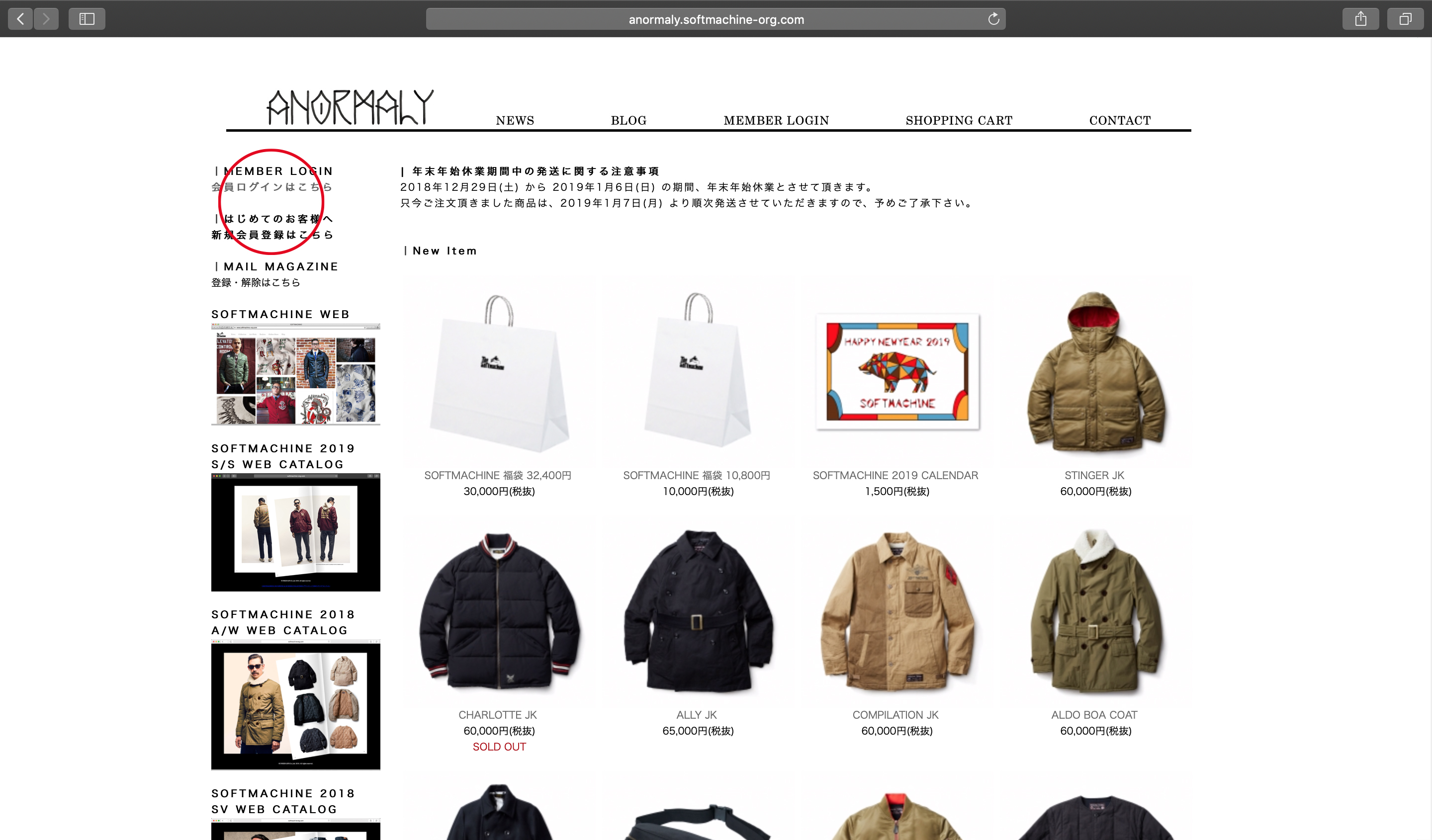 WEB SHOP ANORMALY WINTER SALE
