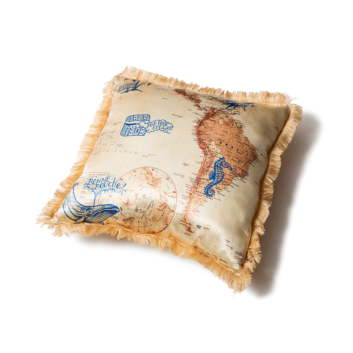 DISCOVERY CUSHION